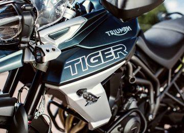 Aún más estilo de tigre